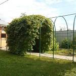 Арки садовые в г. Ликино-Дулёво